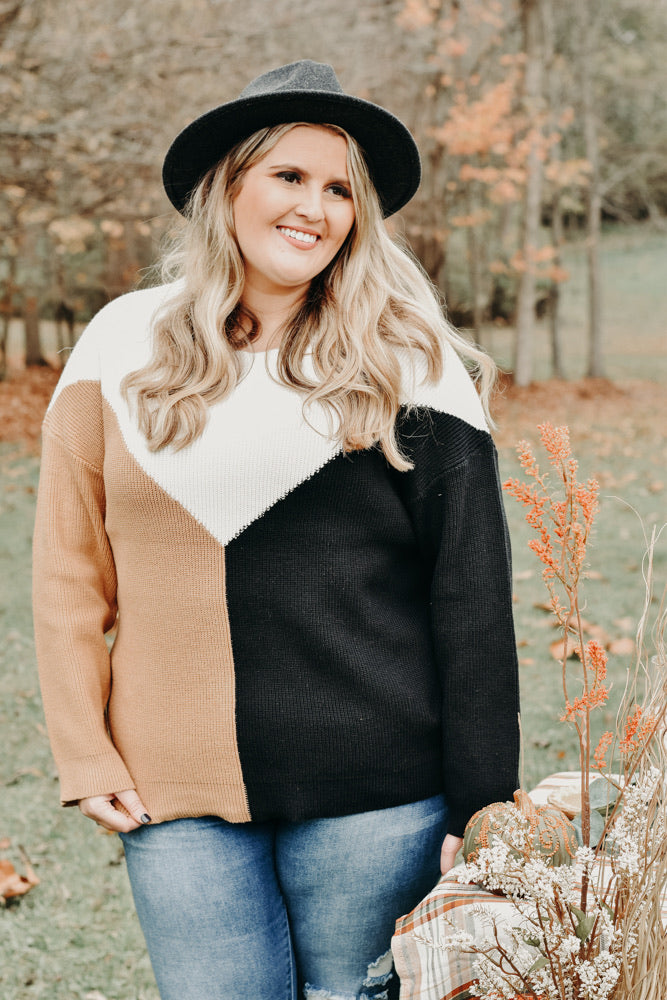 Cozy Colorblock Sweater , Ivory/Mocha/Black