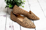 Arie Loafer, Leopard