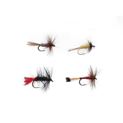 DRY FLY ASSORTMENT II