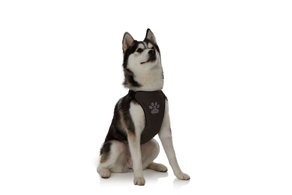 EZ-PET Comfort Soft Adjustable Harness