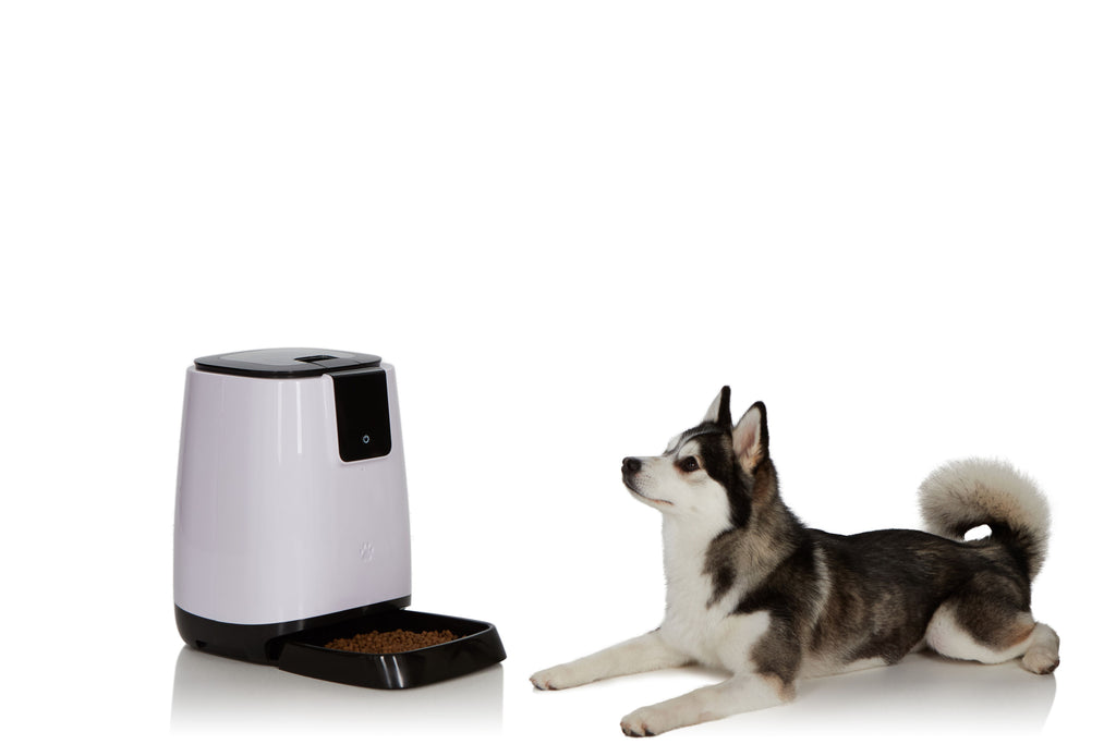 EZ-PET Smart Programmable Automatic Feeder