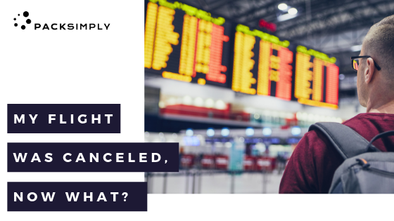 My Flight Was Canceled, Now What?