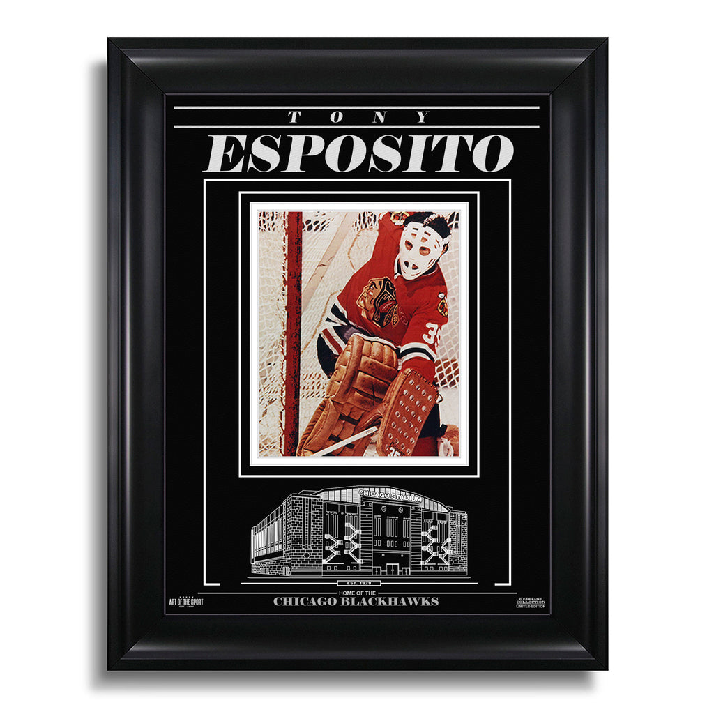 Tony Esposito Chicago Blackhawks Engraved Framed Photo - Action