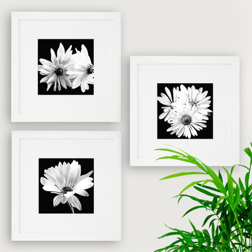 free downloadable art for place push frames the utr store