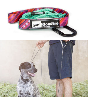 Minimus Leash Southwest