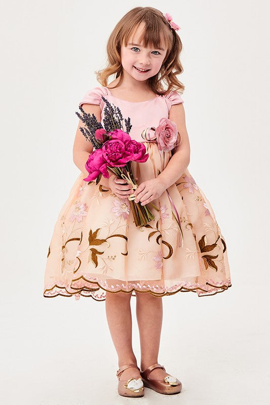 Dust Pink Floral Embroidered Girl Dress