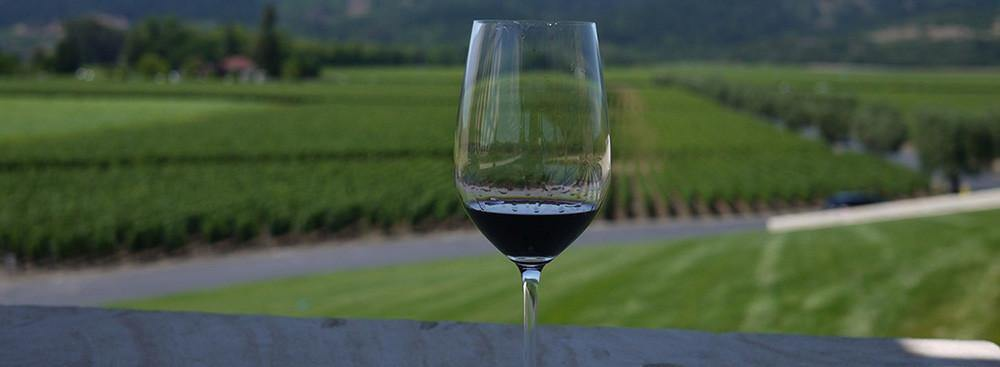 Popping The Cork on Cabernet Sauvignon and Pairing Foods With it! - TBWS