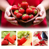 Strawberry Corer