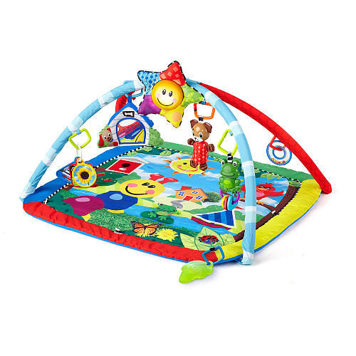 Activity Gym/Play Mat