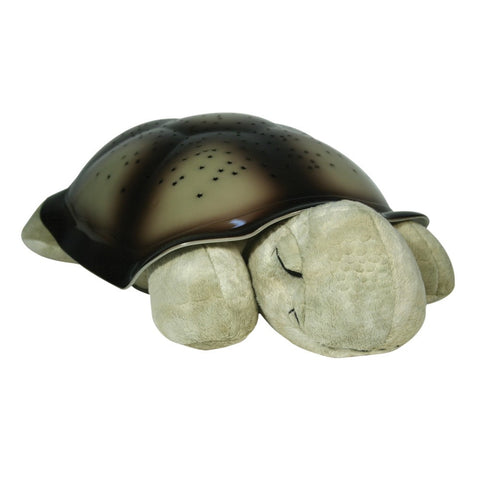 Night Light Turtle