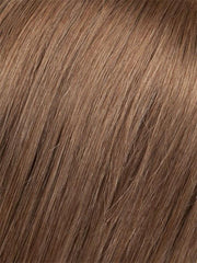 6/10T Medium Dark Brown Blended with Medium Chestnut Brown with Golden Brown Tips