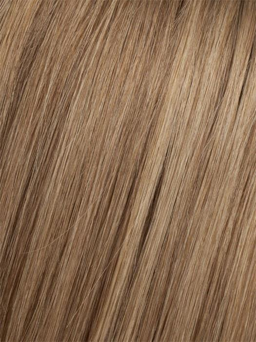 8/14T Light Chestnut Brown Blended with Dark Ash Blonde, Dark Ash Blonde Tips