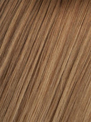 10/14T Medium Golden Brown Brown Blended with Dark Ash Blonde, Dark Ash Blonde Tips