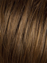 10/16T | Medium Brown and Medium Blonde Blend with Medium Blonde Tips