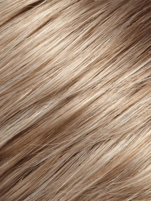 17/101 | Light Ash Blonde and Pale Ash Blonde Blend