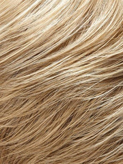 22F16 | Light Ash Blonde and Light Natural Blonde Blend with Light Natural Blonde Nape