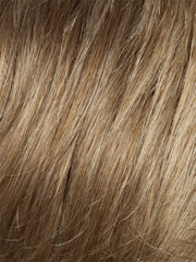 234/27H | Gold Blonde with Light Auburn Highlights