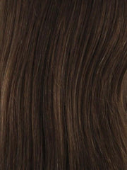 4/6/8/33 Blend of Dark Brown, Medium Chestnut Brown, Light Chestnut Brown and Dark Auburn