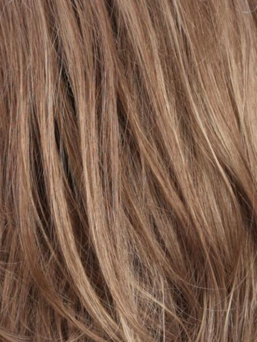 R12/26H | Light Brown with Golden Blonde Highlights on Top