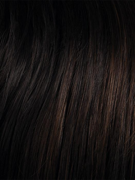 2/6 | darkest brown with warm medium brown highlights