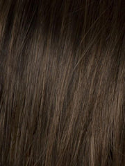 SS10 SHADED CHESTNUT | Rich Medium Brown Evenly Blended with Light Brown Highlights and Dark Roots