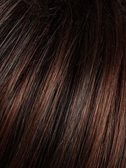 SS4/33 | SHADED EGGPLANT | Dark Dark Brown with Subtle Warm Highlights  Roots