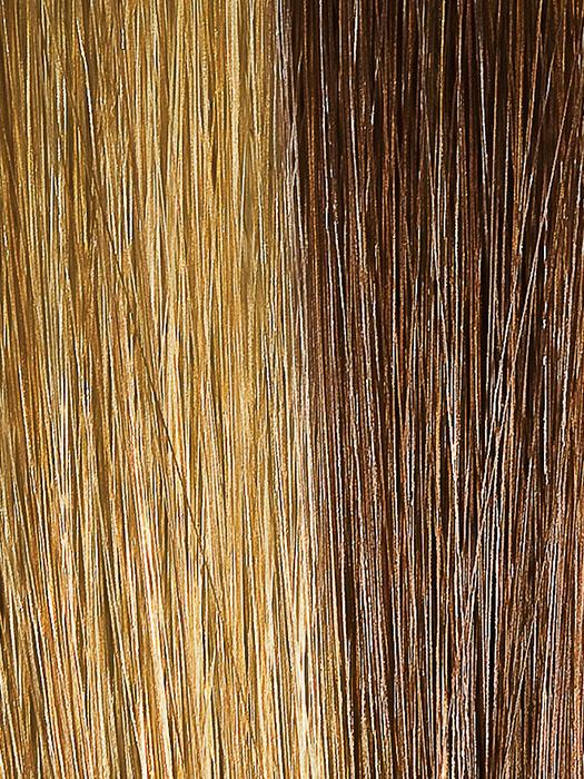 14014 SPRING HONEY | Light Ash Brown and Blonde Streaked