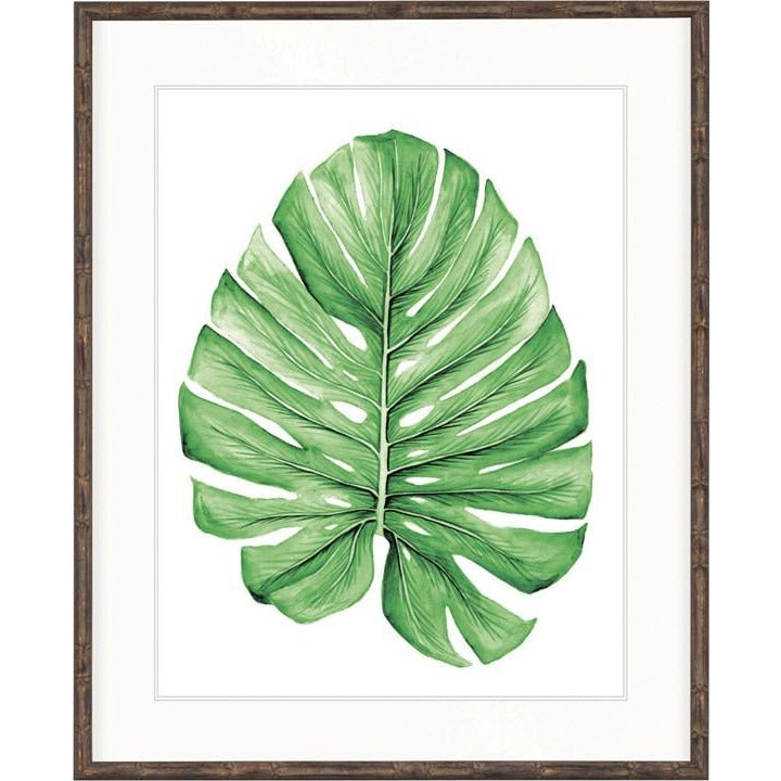 Bangalow Collection - Bangalow Leaf Green I