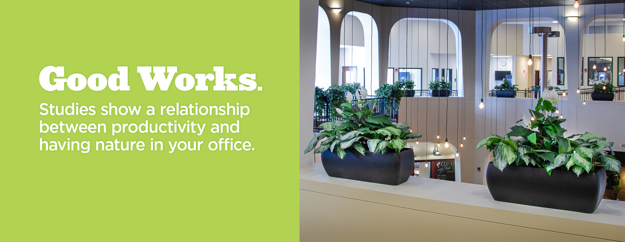 Athena Planters: Good Works. Studies show a relationship between productivity and having nature in your office.