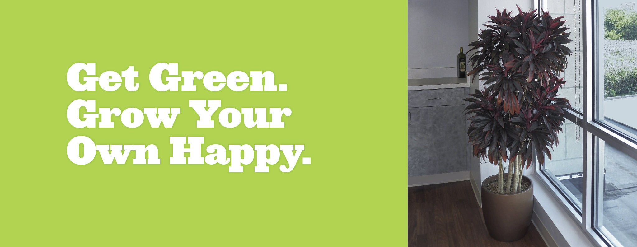 Get Green. Grow your own happy. Bravo Planter