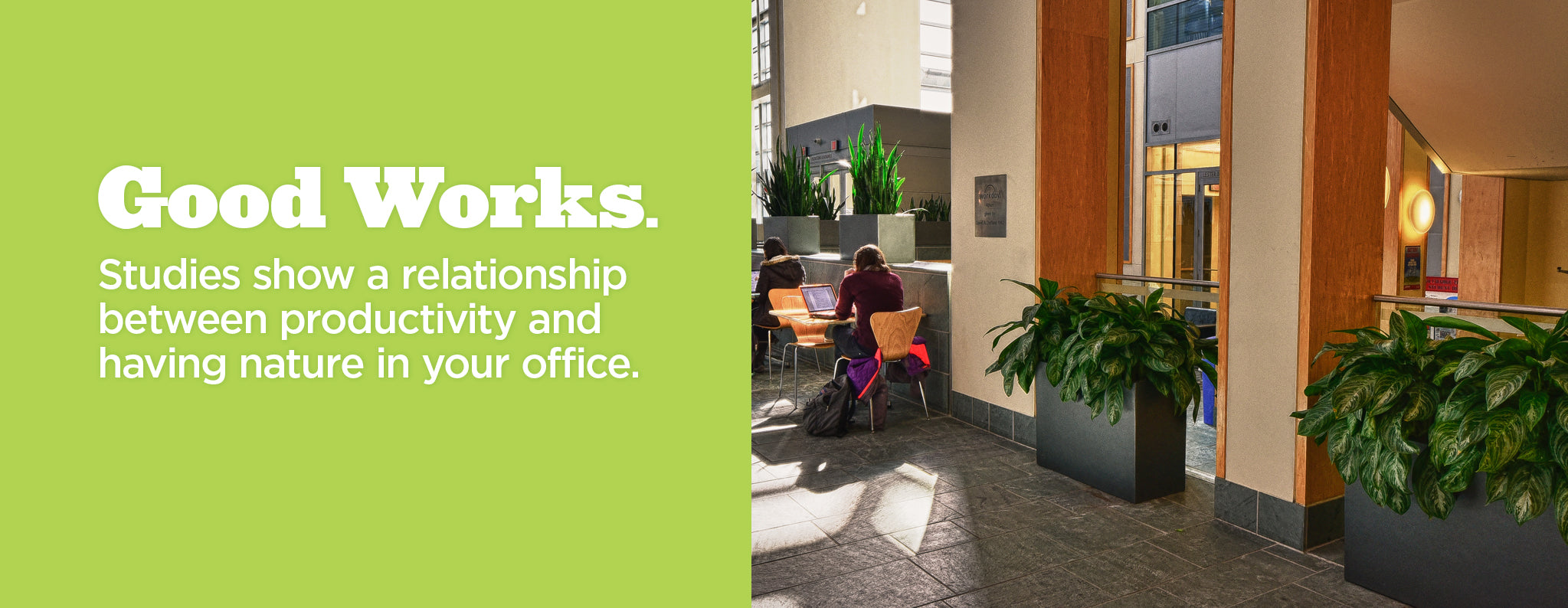 Earth Wall Planters. Good Works. Studies show a relationship between productivity and having nature in your office.