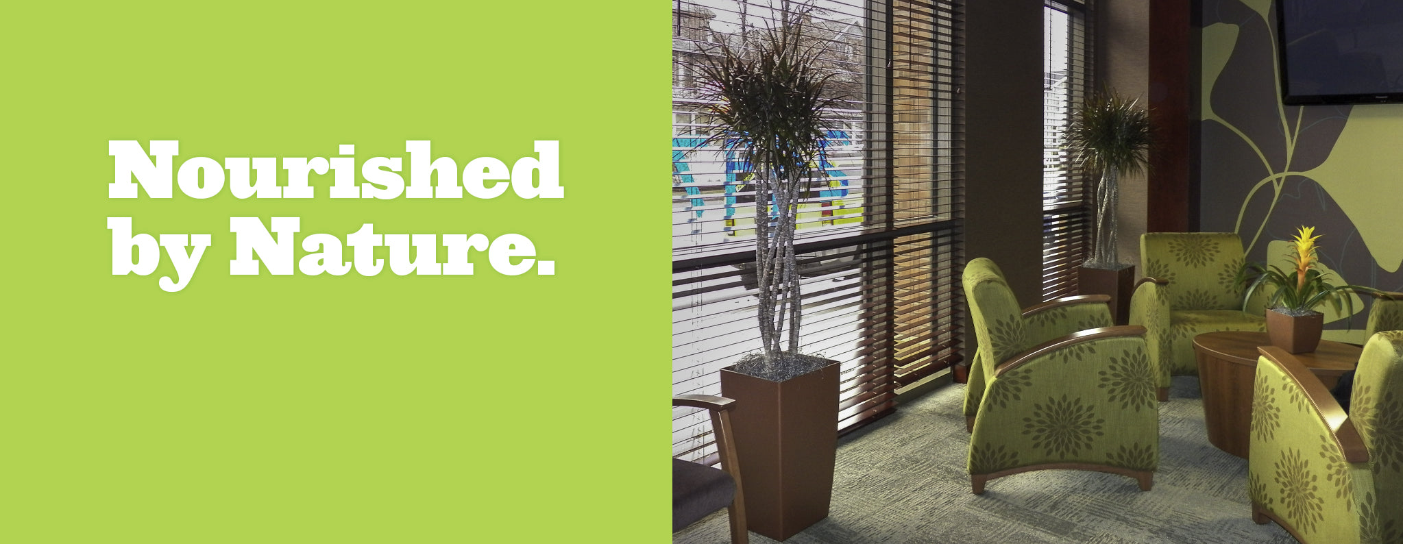 Nourished by Nature - with Optimum One TM Planters at Botanicus Direct
