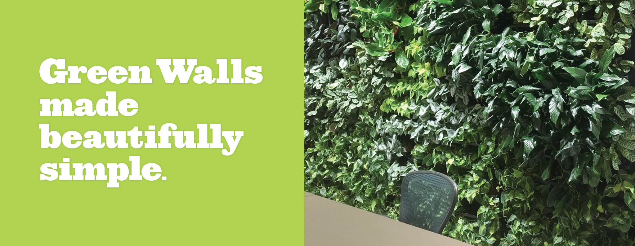 Botanicus Plantups Greenwalls - a living green wall system that is modular and easy to install