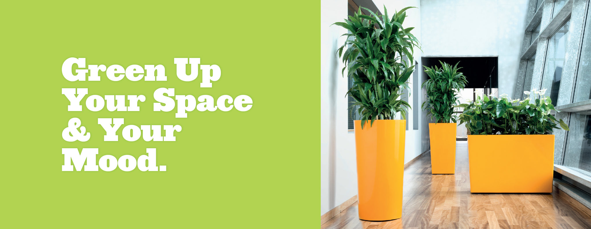 Rise Planters: Green up your space and your mood.