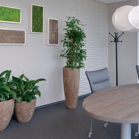 Moss Wall Art with Light Stone Insert and Light Stone Planters