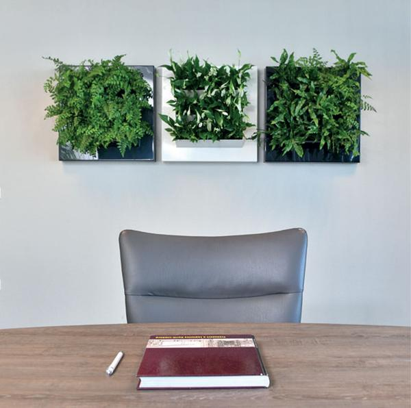 MossWall Live adds living plants to add dimension to your Moss Wall Art.