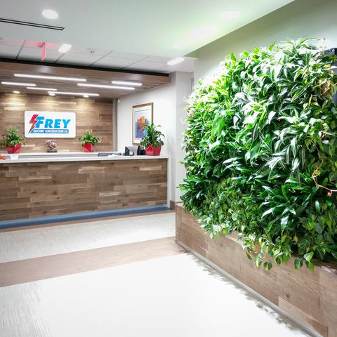 Plantup Green Wall at Frey Electric