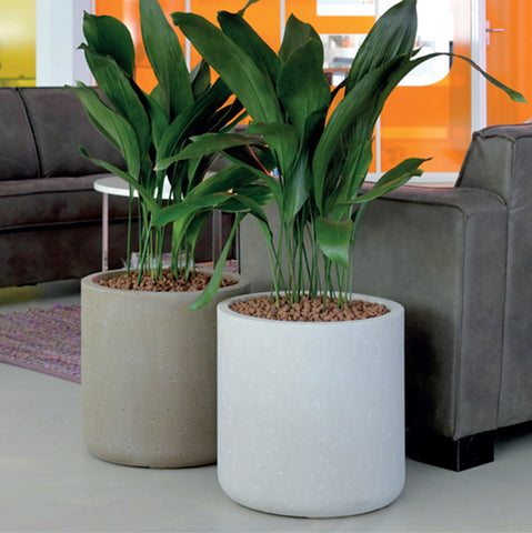 Strong Clay Cylinder Planter