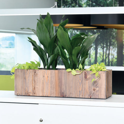 Salvaged Wood File Top Rectangle Planter