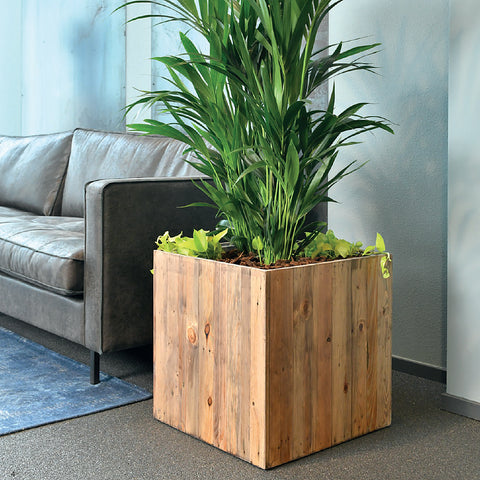 Salvage Wood Cube Planter