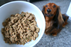 DJANGO Dog Blog: How to choose the best dog food
