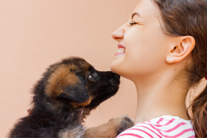 New Puppy Checklist: Everything You Need Before Bringing Home a New Dog - djangobrand.com