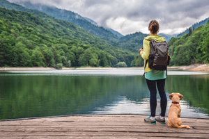10 Best Small Dog Breeds to Take Hiking and Backpacking