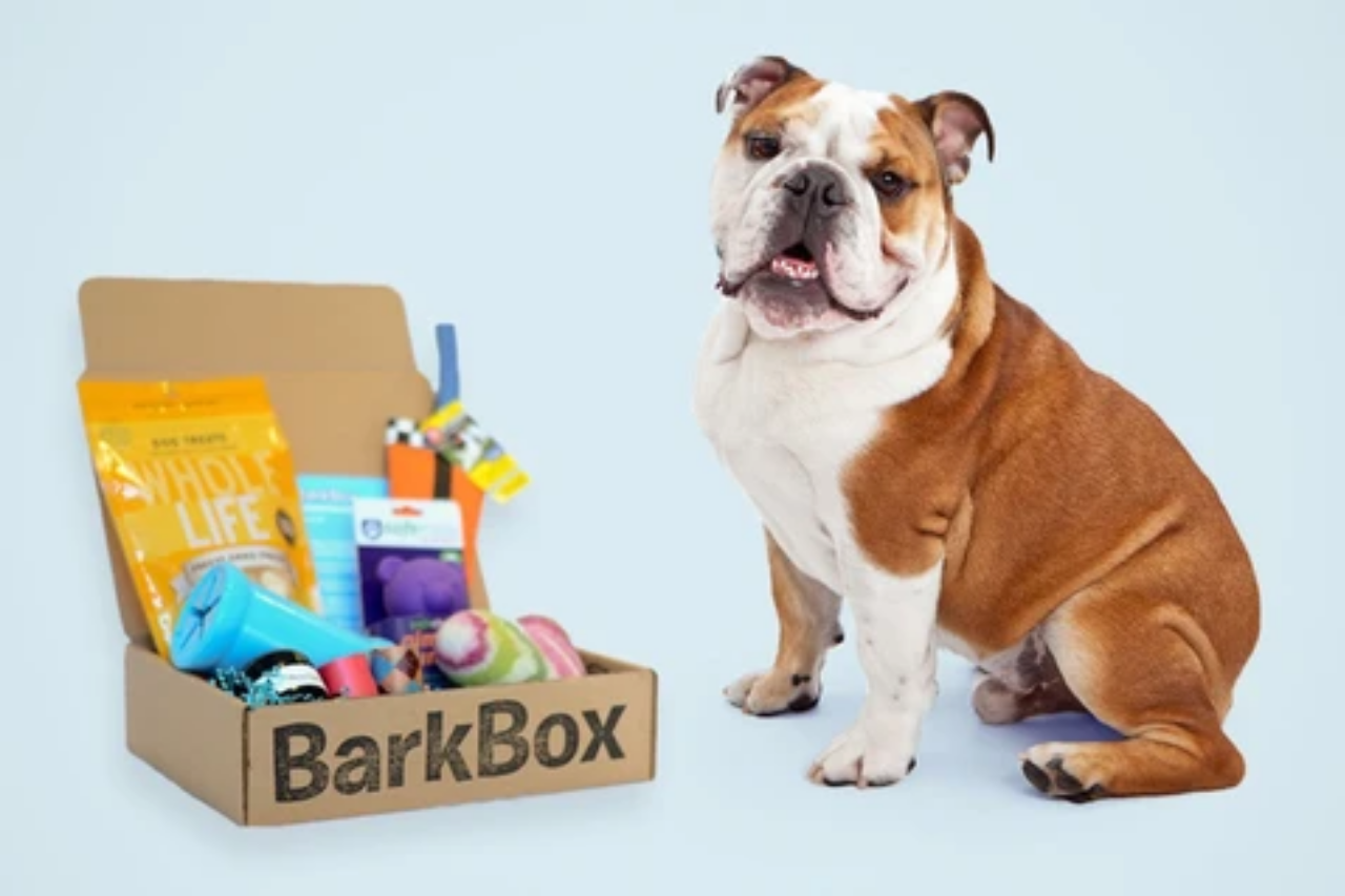 BarkBox Subscription Monthly Toy Service