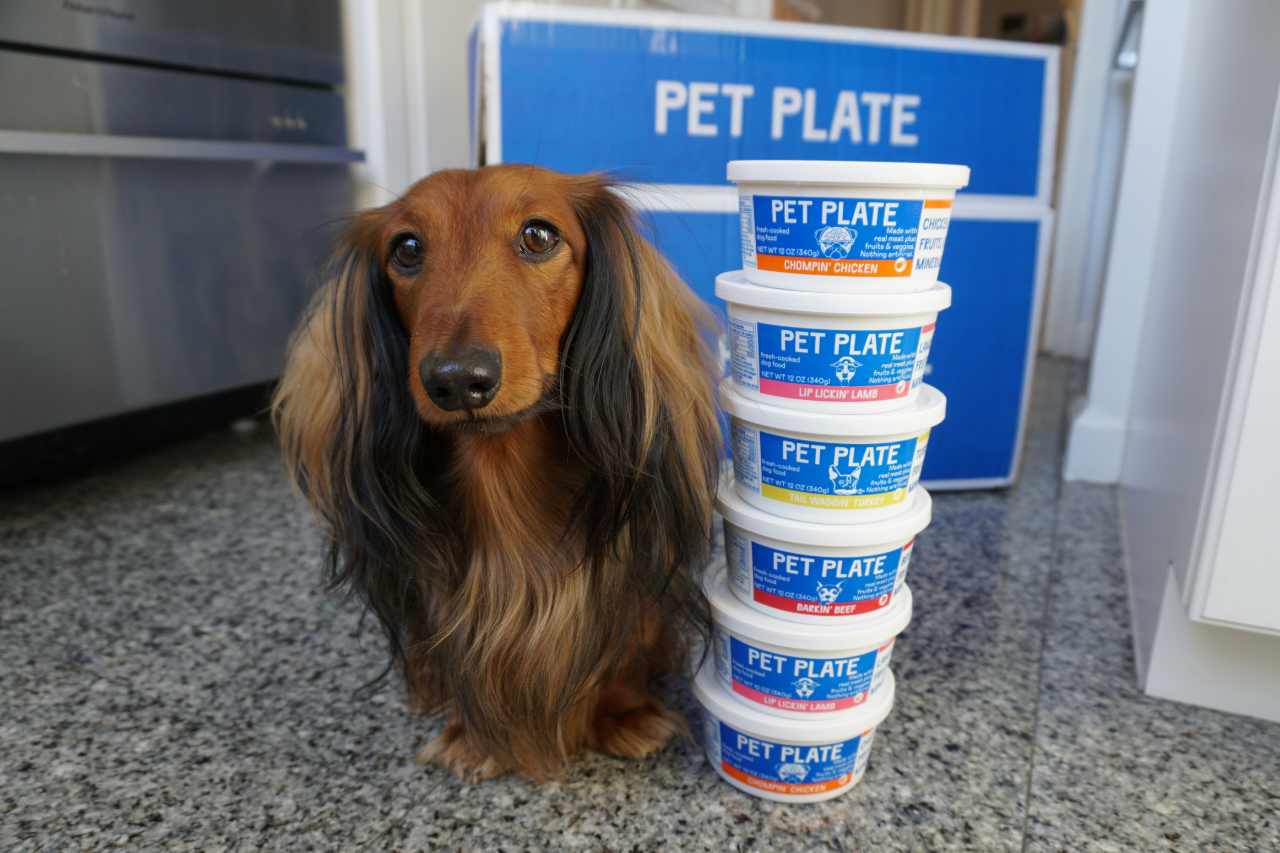 Pet Plate Fresh Dog Food Monthly Subscription
