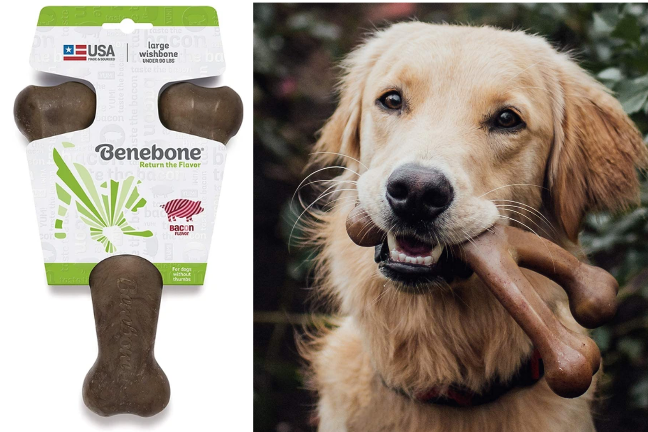 BENEBONE | WISHBONE DOG CHEW TOY FOR AGGRESSIVE CHEWERS