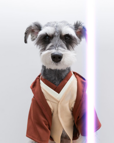 DJANGO Dog Blog - Remix Star Wars