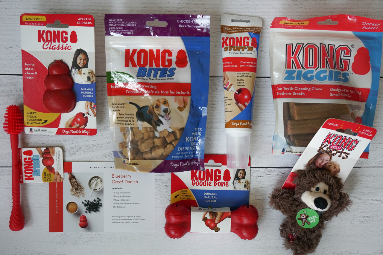 DJANGO Dog Blog - What's inside KONG Box dog treats and dog toy subscription box - djangobrand.com