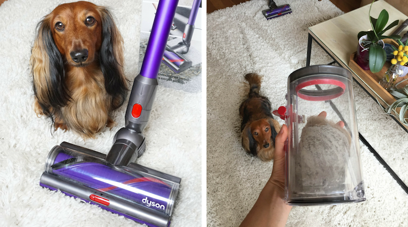 Dyson | Cyclone V10 Animal Lightweight Cordless Vacuum Cleaner