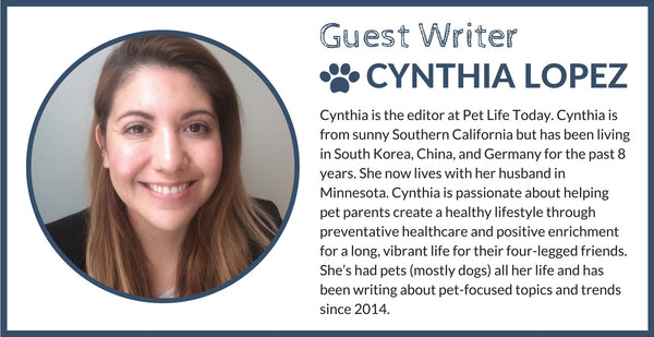DJANGO Dog Blog guest writer Cynthia Lopez